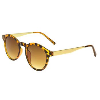 Óculos Ray Flector Piccadilly Circus VTG536CO Onça
